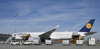 A350 Lufthansa Covid-19 Munich Fret